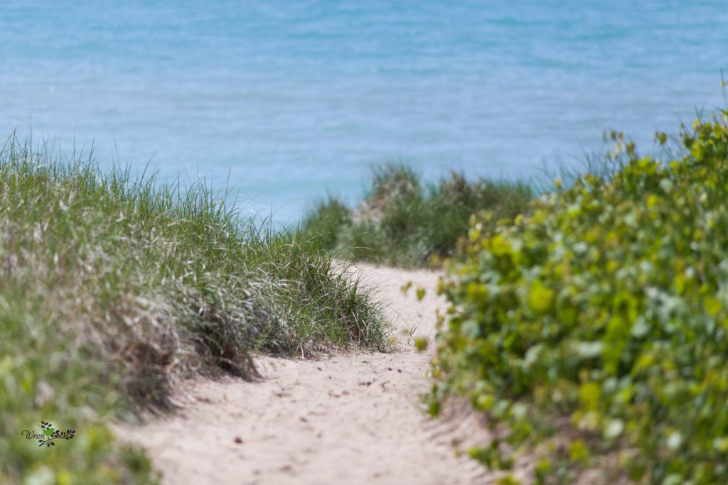 sleeping-bear-dunes-wedding_0001